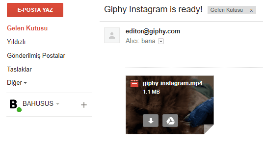 Giphy instagram mp4